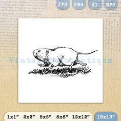 Printable Groundhog Digital Graphic Cute by VintageRetroAntique