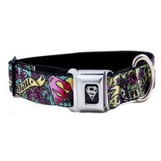 "Ellie needs this collar!!  Supergirl Seat Belt Buckle Dog Collar 1.5"" 13-18"": Amazon.com: Pet Supplies"