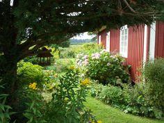 Northern Light: Cottage Garden