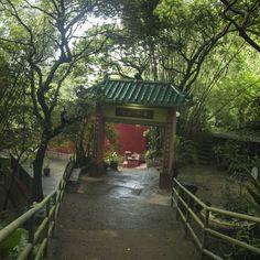 Cheung Chau | Hong Kong  A old temple saw during mini Great Wall walk.  #travel #hongkong #cheungchau #temple #minigreatwall #limkimkeong #limkimkeong_Asia #limkimkeong_hongkong #旅行 #香港 #長洲 #观音廟