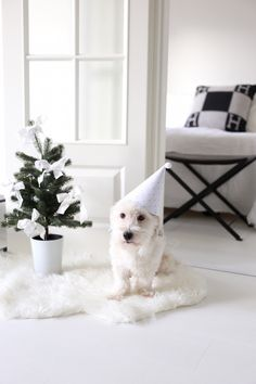 Homevialaura   Baby's first Christmas   Little Christmas tree with white linen bows   Hermes Avalon    white bedroom