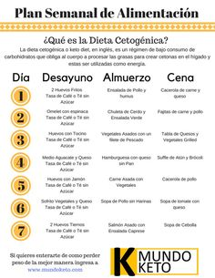 dieta low carb menu semanal pdf