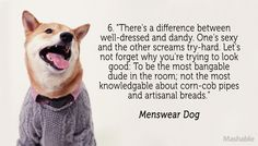 Menswear Dog    PREACH.