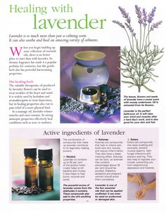 Mind, Body, Spirit Collection - Healing With Lavender Essential Oil Uses, Doterra Essential Oils, Young Living Essential Oils, Healing Herbs, Medicinal Herbs, Natural Healing, Natural Medicine, Herbal Medicine, Herbal Remedies