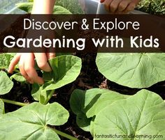 Discover & Explore Gardening with Kids...Book-related activities, gardening tips, science investigations, and more!