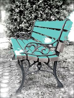 Old Bench Photo Still Life Garden Cottage Art by StudioSwede13