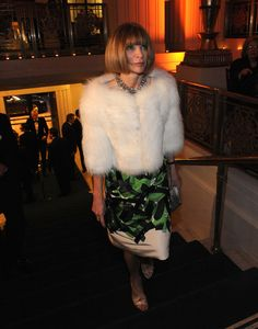 Anna Wintour Photo - Carnegie Hall Medal Of Excellence Gala Honoring Bill Cunningham