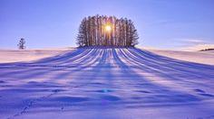 Like a Monument Valley - Biei, Hokkaido, Japan . by Atsushi Hayakawa on Beautiful World, Beautiful Places, Beautiful Pictures, Beautiful Shoes, Winter Scenery, Winter Trees, Snow Scenes, Winter Beauty, Winter Landscape