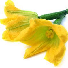 Un buen truco si quieres cocinar las flores del calabacín es lavarlas y dejarlas en la nevera por lo menos una hora, así no se pondrán blandas antes de enharinarlas.