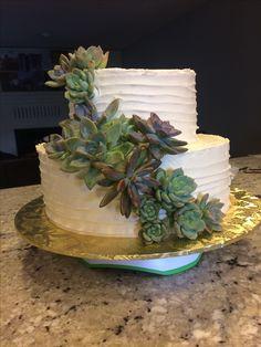 Bridal Shower cake w/ succulents  2017