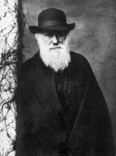 Charles Darwin, English naturalist who established that all species of life have descended from common ancestors, and proposed the scientific process of natural selection © Julia Margaret Cameron