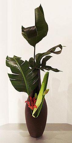 Ikebana Class. By Marei