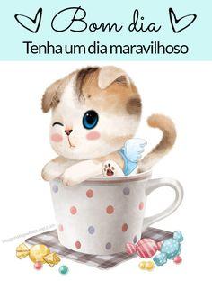 Imagens - Vídeos do gatinho para whatsapp