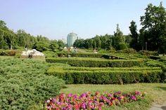Parc Herastrau à Bucarest Destinations, Vineyard, Places, Outdoor, Bucharest, Romania, Park, Outdoors, Vine Yard