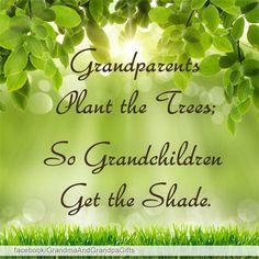 Grandparents plant the trees; So grandchildren get the shade. <3