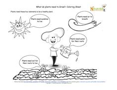 Chef Solus is ready to plant his garden. Kids identify