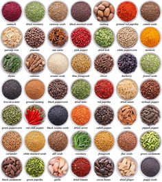 large collection of different spices and herbs isolated on white background Learn English Grammar, English Vocabulary Words, Learn English Words, English Language Learning, Teaching English, English Tips, English Study, English Writing, English Lessons