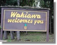 Wahiawa - HOME! Funny how when I searched it any my cousin had three of five pins. =)