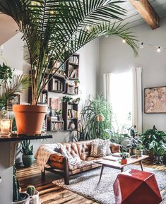 Indoor plants in Hilton Carter's Studio /// Gorgeous Indoor Plants That Will Liven Up Your Home /// By Design Fixation #plants #houseplants #homedecor #greenliving Rental Home Decor, Rental Decorating, Diy Home Decor, Apartments Decorating, Decorating Bedrooms, Bedroom Decor, Decorating Ideas, Decor Ideas, Beautiful Interior Design