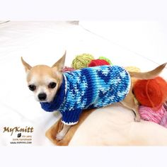 Myknitt hand crochet pet clothing royal blue sweater by myknitt dog boutique. www.myknitt.com  #handmade #crochet #dogclothing #pet #dogboutique #myknitt #crochet #knit