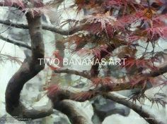 053 Designs Of A Chinese Maple by Richard Neuman Digital Media ~ 18 x 24