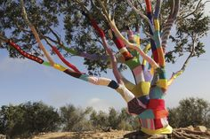 Stephen Duneier's Yarn Bomb Tree @ Cold Spring; saw this while he was working on it, amazing!