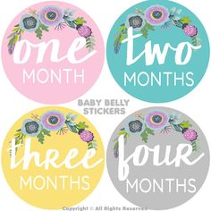 Baby Girl Month Stickers Monthly Baby Stickers Monthly