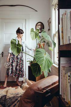 Bursting With Plants, a 1910 Portland Foursquare for a Florist and Barista | Design*Sponge