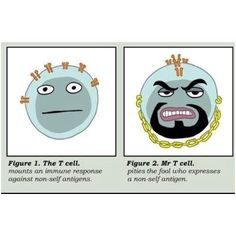T cell pities the fool who expresses a non-self antigen.