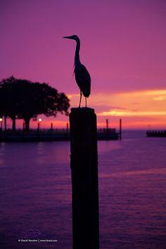 Point Clear #sunset -Fairhope Alabama on the Gulf coast DONE