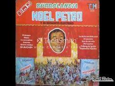 NOEL PETRO - DIANA - YouTube Diana, Donkeys, Books, Youtube, Cordoba, Songs, December, Colombia, Noel