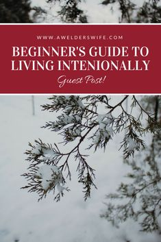 A Beginner's Guide to Living Intentionally - Guest Post by Sarah at LovingLittleDixie.com | www.awelderswife.com