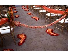 Fable Photo rose petal aisle. Eco-friendly rose petals available at www.flyboynaturals.com over 100 colors to choose from!