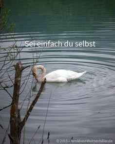 Das letzte Scanner-Ding - http://lifecatcher.de/das-letzte-scanner-ding/