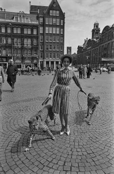 edith weidamann and her two leopards | amsterdam 1965 | foto: jaques klok
