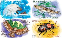 Endangered Species Condoms: Show You Care, Down There