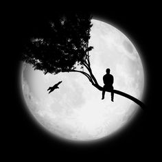 Art Discover Free Image on Pixabay - Moon Man Tree Only Wallpaper Space, Dark Wallpaper, Galaxy Wallpaper, Eagle Wallpaper, Night Sky Photos, Beautiful Nature Wallpaper, Beautiful Moon Pictures, Moon Photography, Art Drawings Sketches
