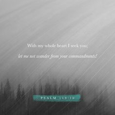 I have tried hard to find you— don't let me wander from your commands. Psalms 119:10