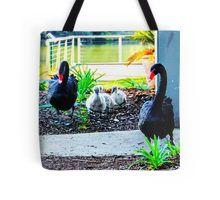 Black Swan Parade - Pen, Cob and Cygnets Tote Bag