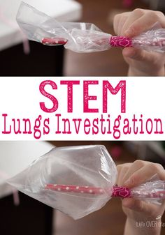 STEM Respiratory System Investigation Asthma versus Healthy - Life Over Cs STEM Respiratory System Investigation. Learn how the healthy lungs work, plus the effect that asthma and other lung infections affect our breathing. Human Body Science, Human Body Activities, Human Body Unit, Human Body Systems, Science Activities, Science Experiments, Science Ideas, Enrichment Activities, Autism Activities
