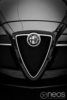 Alfa Romeo 8C Grill Black and White