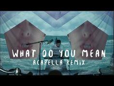 Justin Bieber - What Do You Mean? - Dillon Francis - Acapella Remix - YouTube