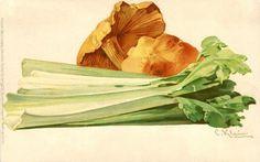 Celery and Mushrooms