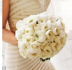 White ranunculus for bouquets.