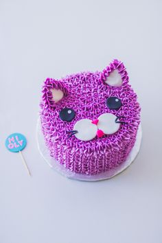 1104 Best Cat Cakes Images Pound Cake Fondant Cakes