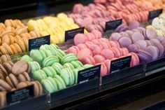 Macaroons, the best I ever ate were in Paris! Spongebob Memes, Spongebob Squarepants, Pineapple Under The Sea, Oui Oui, It Goes On, Mind Blown, The Funny, The Best, Funny Pictures