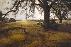 ADAIR PAYNE - Portfolio, Hutchinson Ranch, 24 x 36