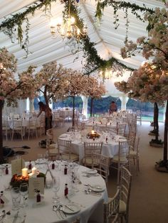 Our Cherry Blossom Trees at a spring wedding www.crescent-moon.co.uk