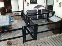 Diy Guinea Pig Cage, Guinea Pigs, Pet Plan, Rabbit Enclosure, Pet Resort, Rabbit Hutches, Secret Life Of Pets, Catio, Dog Park