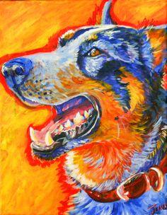 Blue Heeler, Cattle dog